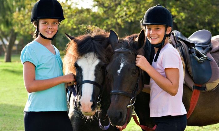 Majestic Hooves Equestrian Stables - 2: One or Three Private 60-Minute Horseback-Riding Lessons at Majestic Hooves Equestrian Stables (Up to 57% Off)