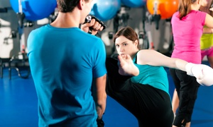 Hybrid Academy of Mixed Martial Arts: $29 for One Month of Unlimited Classes at Hybrid Academy of Mixed Martial Arts ($140 Value)