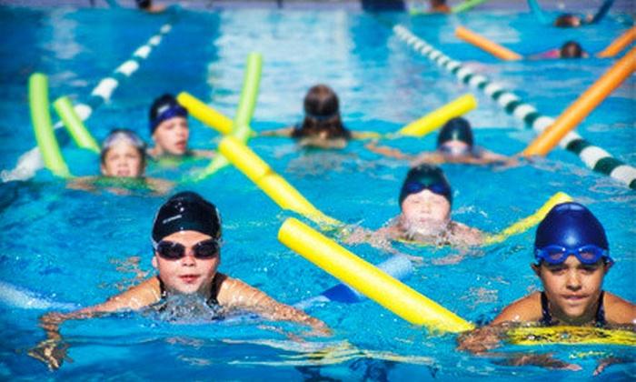 Zionsville High School Aquatics Center - Zionsville: 5, 10, or 20 Pool Visits or AquaFit Classes at Zionsville High School Aquatics Center (Up to 58% Off)