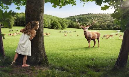 Entrée pour le Parc Animalier au Domaine des Grottes Han pour toute la famille