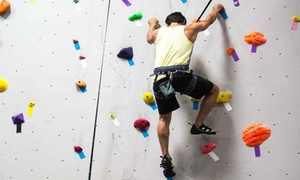 Top Out Climbing Center: Rock-Climbing Lesson for One, Two, or Four at Top Out Climbing Center (Up to 72% Off)