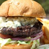 Half Off Dining and Entertainment at Latitude 39