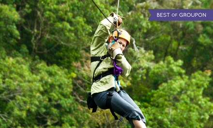 Treetop Zipline and Challenge Course for Two or Four at The Adventure Center at Skytop Lodge (Up to 51% Off)