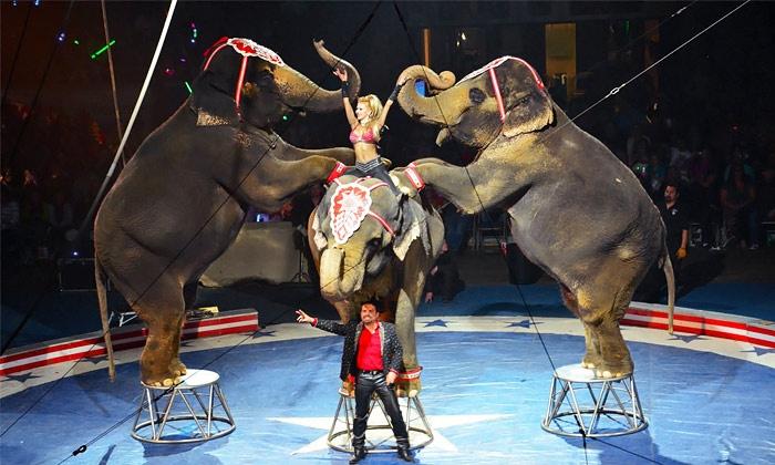Shrine Circus - BB&T Arena: Shrine Circus (February 26–28, 2016)