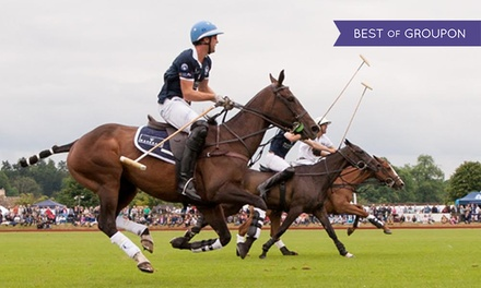 Gloucestershire Festival of Polo, Entry for Four with One Car, 10 and 11 June