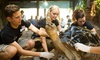 ZSL London Zoo - ZSL London Zoo: Zoo Keeper for a Day on 1 May - 29 June at ZSL London Zoo (Up to 36% Off)