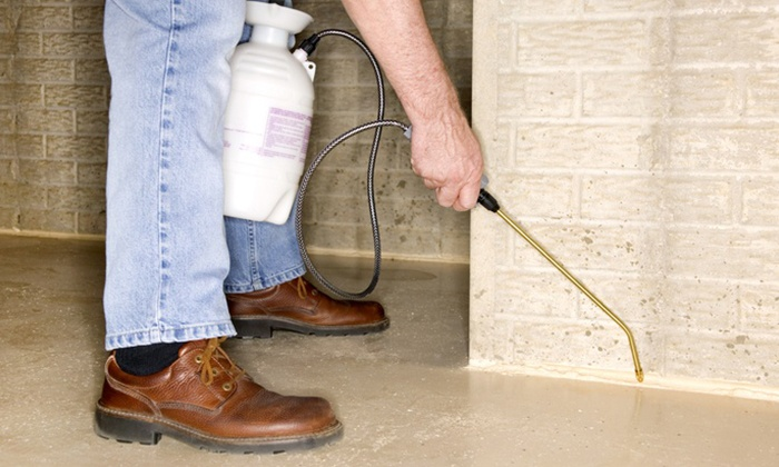 Adept Exterminating - Gloucester Point: $99 for One Pest-Control Yard Spray with Indoor Spray from Adept Exterminating ($228 Value)