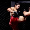 62% Off Cage Fighting at Celebrity Theatre