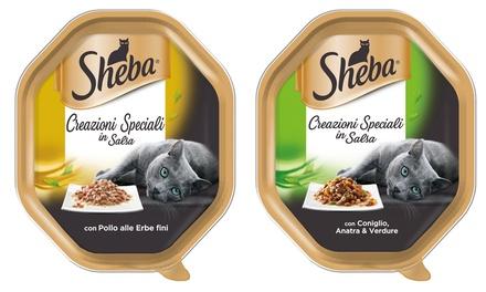 66x Sheba Creazioni Speciali in Salsa con Tacchino 85 g