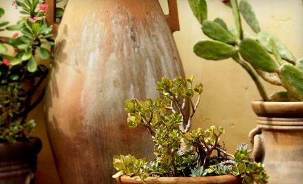 $30 Groupon to Arid Lands Greenhouses - Arid Lands Greenhouses in Tucson