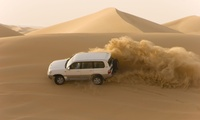 Traditional Evening Safari for One, Two or Four with New York Tours