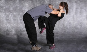 Krav Maga Official Training Centers: 5, 10, or 20 Adult or Teen Krav Maga Classes at Krav Maga Official Training Centers (Up to 87% Off)
