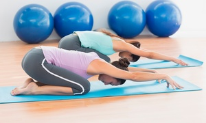 Online Academies: Online Pilates Instructor Course with Online Academies (92% Off)