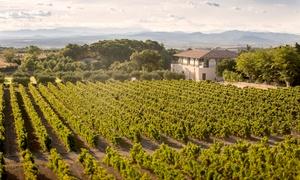 Restaurant Côté Mas: Visite du chai avec visite du domaine en quad et dégustation de vins pour 2 personnes à 49 € au Restaurant Côté Mas