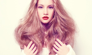 The Arch: Cut and Finish With Conditioning (£19.95) or Highlights (£29.95) at The Arch (Up to 71% Off)