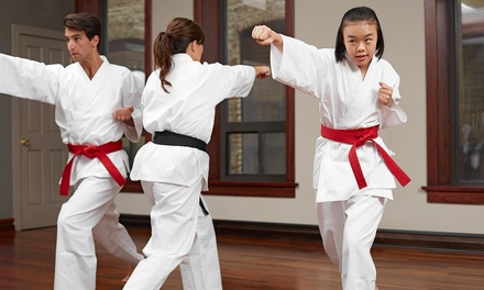 10 or 16-Class Pass, Uniform, Belt, and Certificate at Sidekicks Martial Arts Academy (Up to 82% Off)