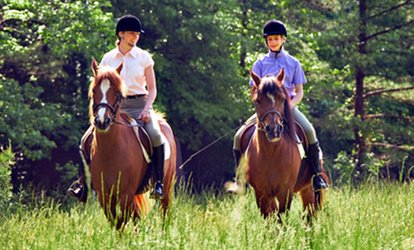 image for Private Horse Riding Lesson With a One-Hour Trek at MatchMoor (Up to 54% Off)