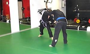 Boa Vida BJJ LLC: 5 or 10 Brazilian Jiu-Jitsu Classes at Boa Vida BJJ LLC (Up to 51% Off)