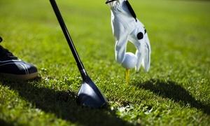 Hamelner Golfclub e.V. Schloss Schwöbber: DGV-Golfmitgliedschaft für das Jahr 2017 im Hamelner Golfclub e.V. Schloss Schwöbber (bis zu 73% sparen*)