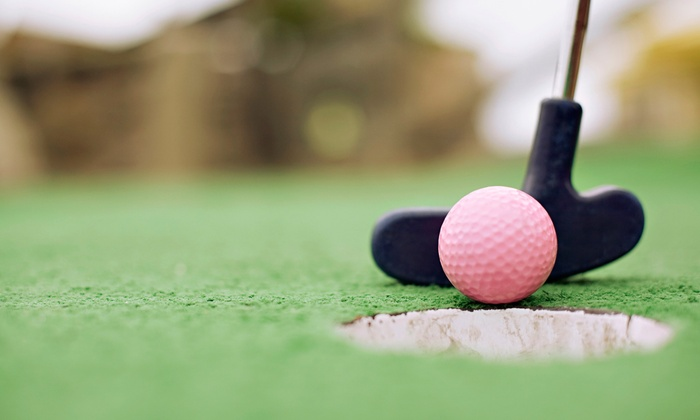 Wedges 'N Woods - Cambridge: 10-Visit Driving-Range Punch Card or Round of Mini Golf for Two or Four at Wedges 'N Woods (Up to 54% Off)