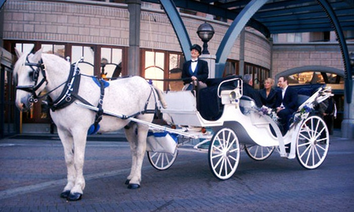 Black Beauty Line - Downtown: $499 for a Drive-Away Horse-Drawn-Carriage Wedding Package from Black Beauty Line ($1,099 Value)