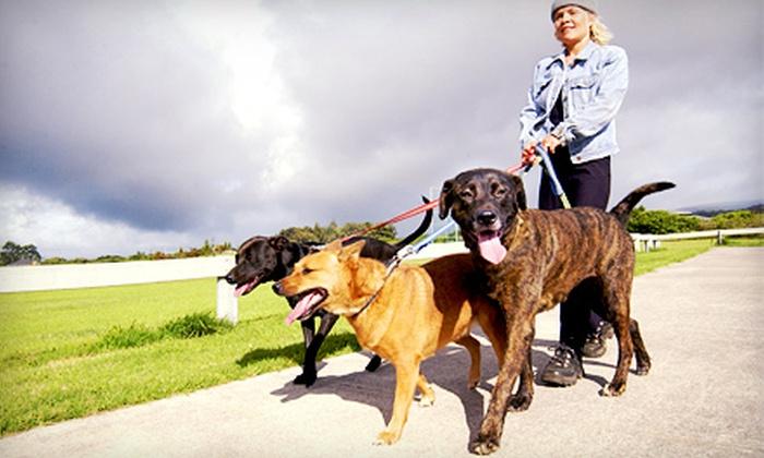 Crescenti Moon Pet Sitting - Chesapeake: $27 for $60 Toward Pet Sitting, Dog Walking or Running or Pet Waste Removal at Crescenti Moon Pet Sitting
