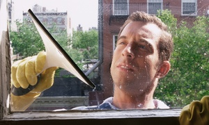 Window Guys of Tennessee: Window Cleaning for 10 or 20 Windows from Window Guys of Tennessee (Up to 60% Off)