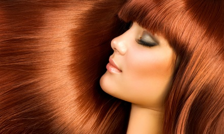 Haircut, Color, Partial or Full Highlight, or a Keratin Treatment at Raymar Salon Day Spa (Up to 65% Off)