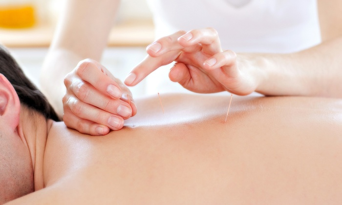 Shani Clinic - Westlake Village: One or Three Acupuncture Sessions at Shani Clinic (Up to 60% Off)