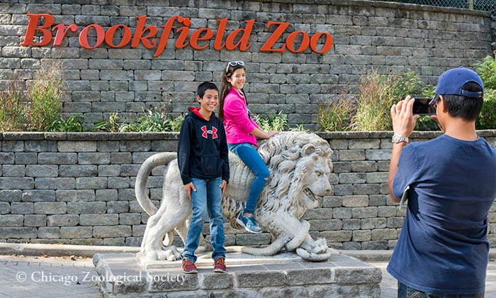 One Adult Admission or One Child/Senior Admission Ticket to Brookfield Zoo (Up to 28% Off)