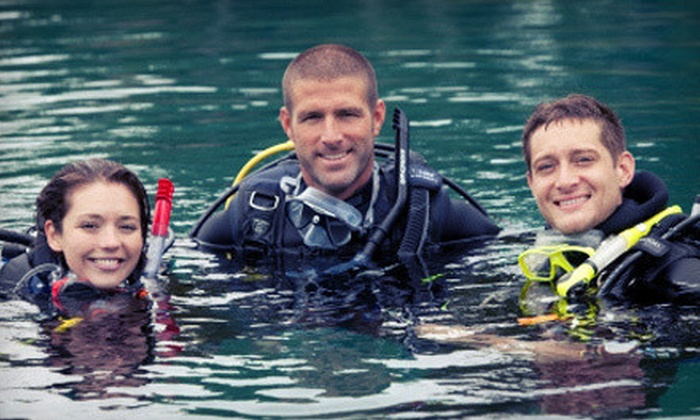 Swim Passes or Intro Scuba-Diving Course at Vortex Spring in Ponce de Leon (Up to 66% Off). Five Options Available.