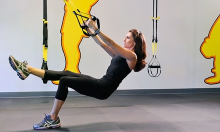 Five or Ten TRX Suspension Training Sessions or a Month of Unlimited Sessions (Up to 51% Off)