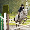 Up to 65% Off Horseback-Riding Lesson in Surrey