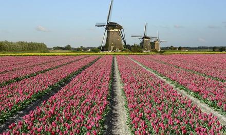 Holandia: wycieczka na Festiwal Kwiatów ze zwiedzaniem Amsterdamu i więcej z biurem Wczasyonline24