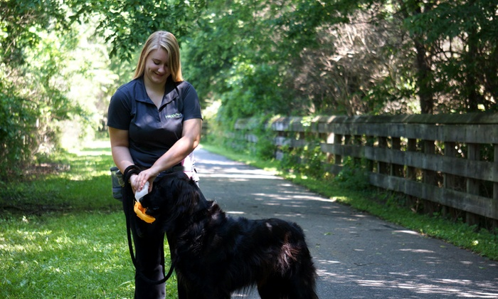 Happy Paws Home Care, Inc. - Cincinnati: Five Dog Walks from Happy Paws Home Care (54% Off)