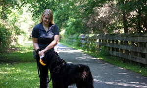 Happy Paws Home Care, Inc.: Five Dog Walks from Happy Paws Home Care (54% Off)