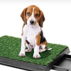 Up to 78% Off PetZoom Dog-Relief Systems