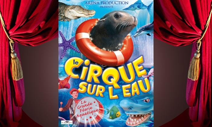 Cirque sur l'eau - Toulouse: 1 place en tribune d'honneur pour Le Cirque sur l'Eau de Médrano à partir de 10 €