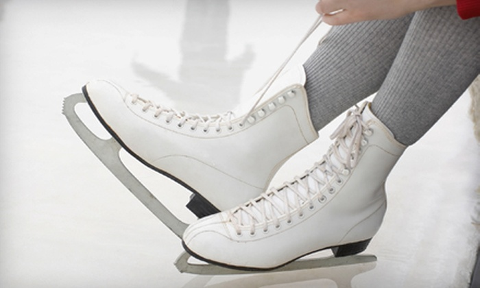 Patterson Ice Center - Grand Rapids: Open Skate for Four with Skate Rentals or Six Weeks of Ice-Skating Lessons at Patterson Ice Center (Up to 61% Off)