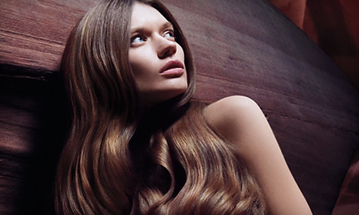 Pure Aveda Salon Spa - Lloyd District: Haircut and Scalp Therapy with Option for Color or Partial or Full Highlights at Pure Aveda Salon Spa (Up to 70% Off)