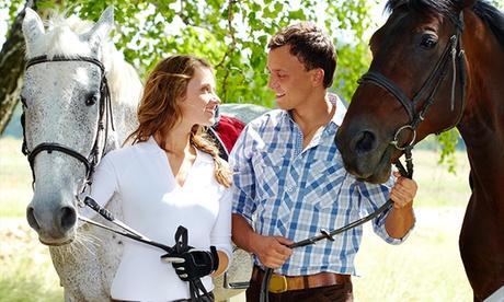 Ruta a caballo de día o de noche con picnic para 2 o 4 personas desde 24 € por la zona de Meco