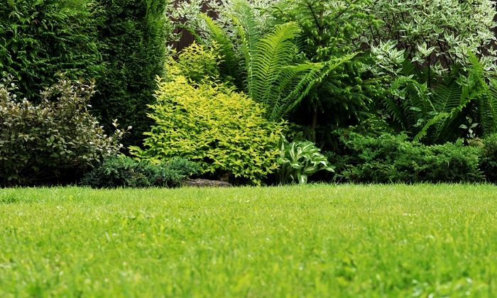 Weed Man - Little Rock: $24 for a Full Lawn Fertilization and a Weed-Control Treatment from Weed Man ($48 Value)
