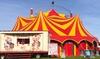 Cirque Pipo
