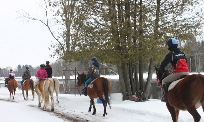 Frontier Trails - Eganville: One-Hour Guided Horseback Riding Trip for Up to Four at Frontier Trails (Up to 36% Off)