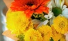 Wolf's Flower Shop - Gravois View: $20 Worth of Bouquets, Plants, and Tropicals