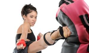 Kickboxing Rockville Centre: 5 or 10 Kickboxing Classes at Kickboxing Rockville Centre (Up to 86% Off)