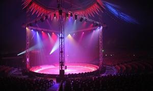 12ème Festival du Cirque de Namur: 1 place de côté ou de face pour le 12e Festival du Cirque de Namur dès 9,99 €