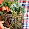 Up to 55% Off Local Produce from Fresh Connect KC