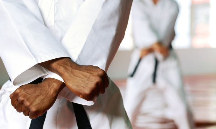 Ageless Shotokan Karate - Paradise: One Week or One Month of Karate Classes with a Private Lesson and Uniform at Ageless Shotokan Karate (Up to 89% Off)