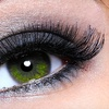 Up to 66% Off Eyelash Perms